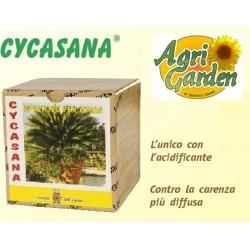 CONCIME CYCASANA - CICAS 250 + 500 gr